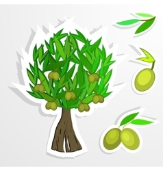 tree on paper Olive oil olive tree vector image vector image