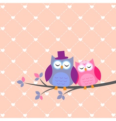Couple owls in love vector image