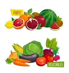 Exotic tropical fruits and fresh vegetables vector
