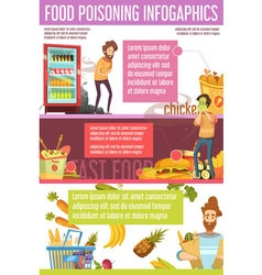 Food Poisoning Causes Flat Infographic Poster vector image vector image