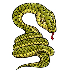 Snake symbol of the year vector image vector image