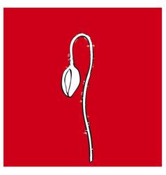 black and white poppy flower stem closed vector image