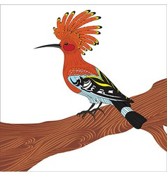 Bird hoopoe vector image