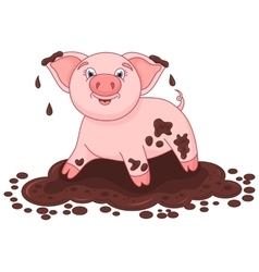 Cute pig in a puddle funny vector