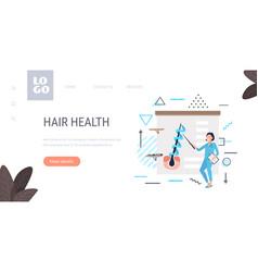 Doctor explaining hair follicle structure keratin vector