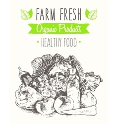 Organic product farm healthy food poster drawn vector