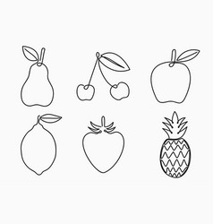 set one line drawing fruits continuous line vector image