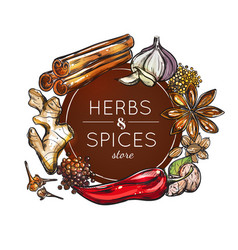 Spice and herb store emblem vector