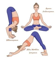 Women silhouette Yoga lotus pose Padmasana Adho vector image