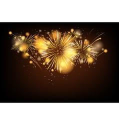 Firework background vector image