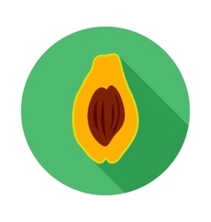 Avocado icon in flat style vector image