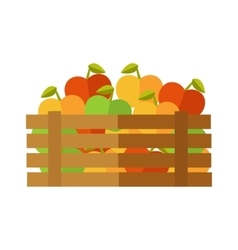 Fresh Apples at the Market vector image