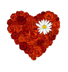 heart roses vector image