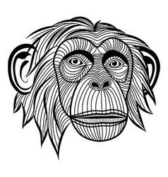 Monkey chimpanzee ape head animal vector image vector image