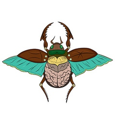 Beetle Scarab vector