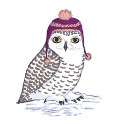 Colorful white owl in purple hat with pompon vector