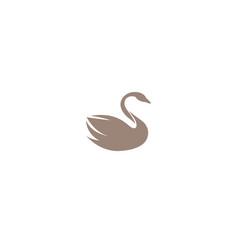 Creative brown swan logo design vector
