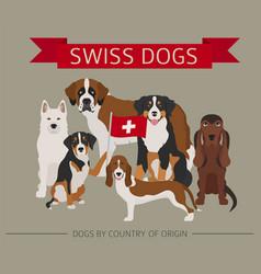 Dogs country origin swiss dog breeds vector