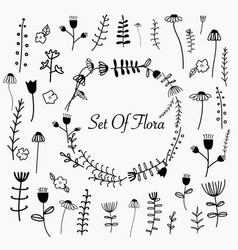 hand drawn set of flora vector image