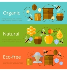 Honey and beekeeping banners vector image