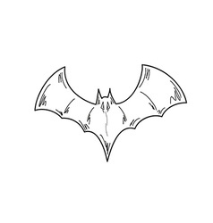 Sketch of the bat vector
