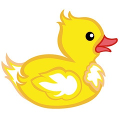 Beautiful duck vector image