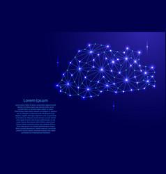 Bhutan map of polygonal mosaic lines network rays vector