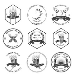 ears wheat and rye set labels badges vector image