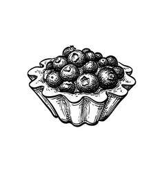 Ink sketch fruit tart with fresh blueberries vector