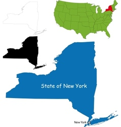 new york map vector image