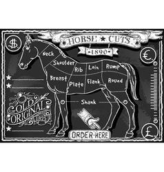 Vintage Blackboard of English Cut of Horse vector image vector image