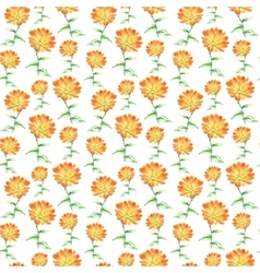 Watercolor calendula herbs seamless pattern vector image