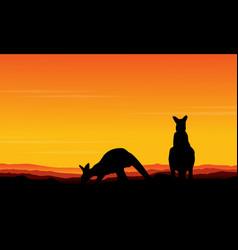 art kangaroo beauty scenery vector image