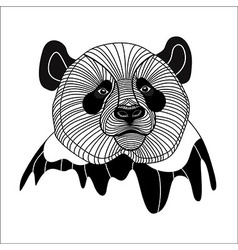 Bear panda head animal line symbol for mascot embl vector image vector image