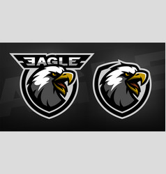 head of the eagle sport logo vector image vector image