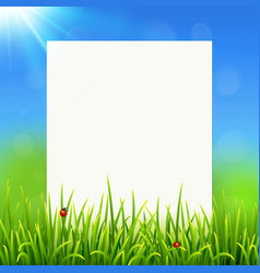White paper sheet on sunny summer grass background vector image