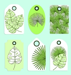 Engraved palm leaves set of tags vector image