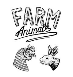 farm animal head a domestic bird cock and vector image