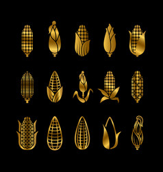 fresh golden corn harvest icons set vector image