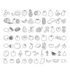 fruit element doodle set fruit doodle vegetarian vector image