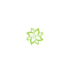 green leaf flower petal beauty logo vector image