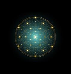 seed life symbol sacred geometry indian mandala vector image