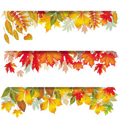 seasonal banners of autumnal leaves vector image vector image