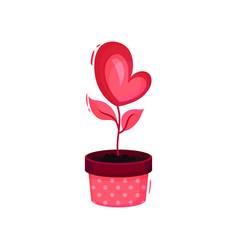 cute heart-shaped pink flower in pot love plant vector image