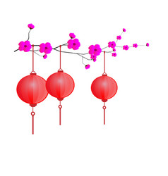 Floral with red chinese lanterns on white vector