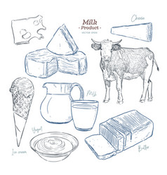 hand drawn sketch dairy products set vector image