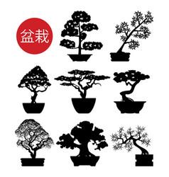 Set black and white bonsai trees vector