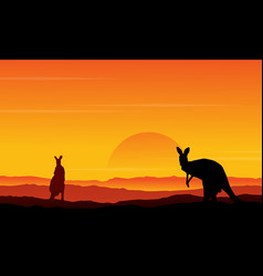 Silhouette of kangaroo on the hill scenery vector