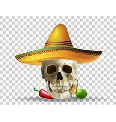 Skull in sombrero mexican holiday realistic vector