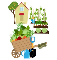 Vegetables garden vector image